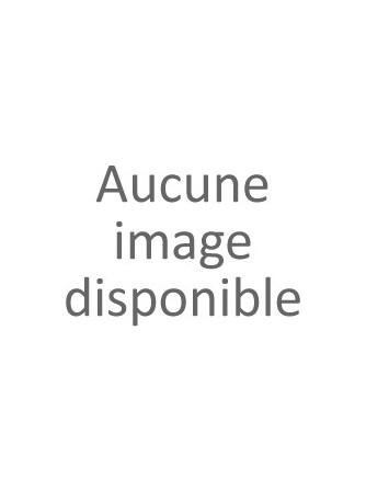 Montlouis sur Loire Sec 2013